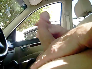 d like to fuck catches me stroking in car